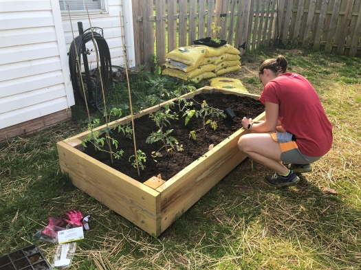 Danielle planting plants in raised bed